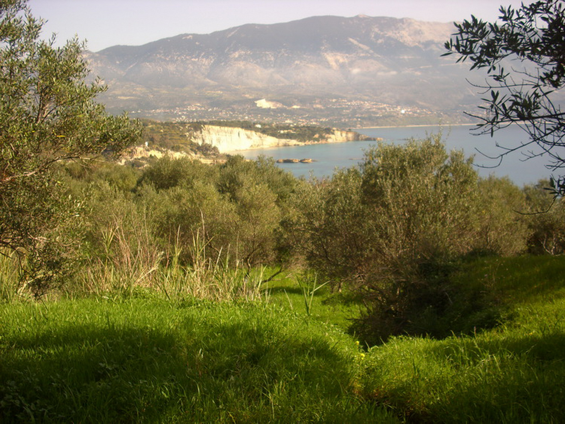 Property For Sale In Spartia Village
