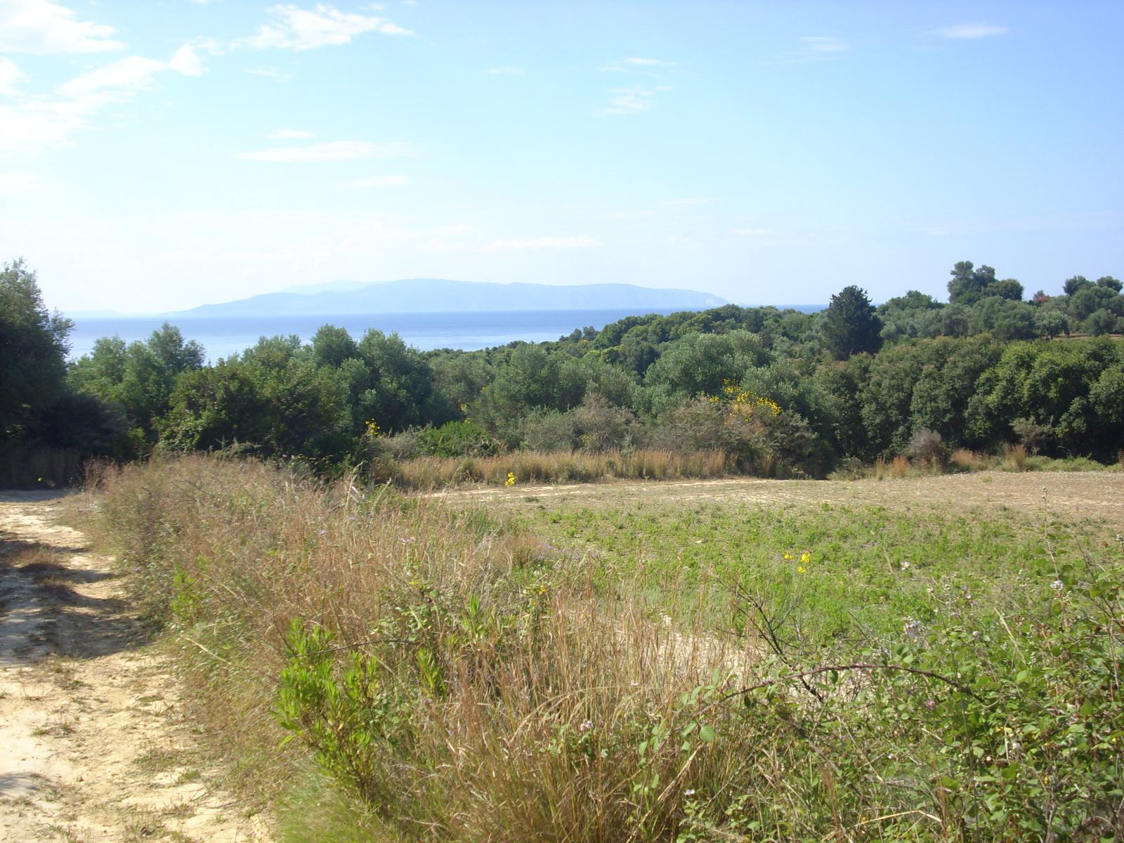 Land For Sale In Pessada Village
