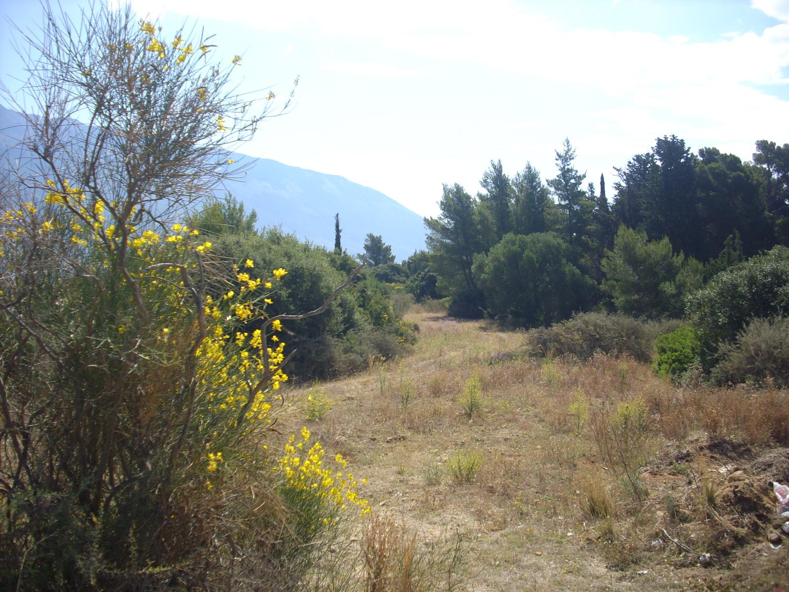 Land In Pessada Village Close The Sea