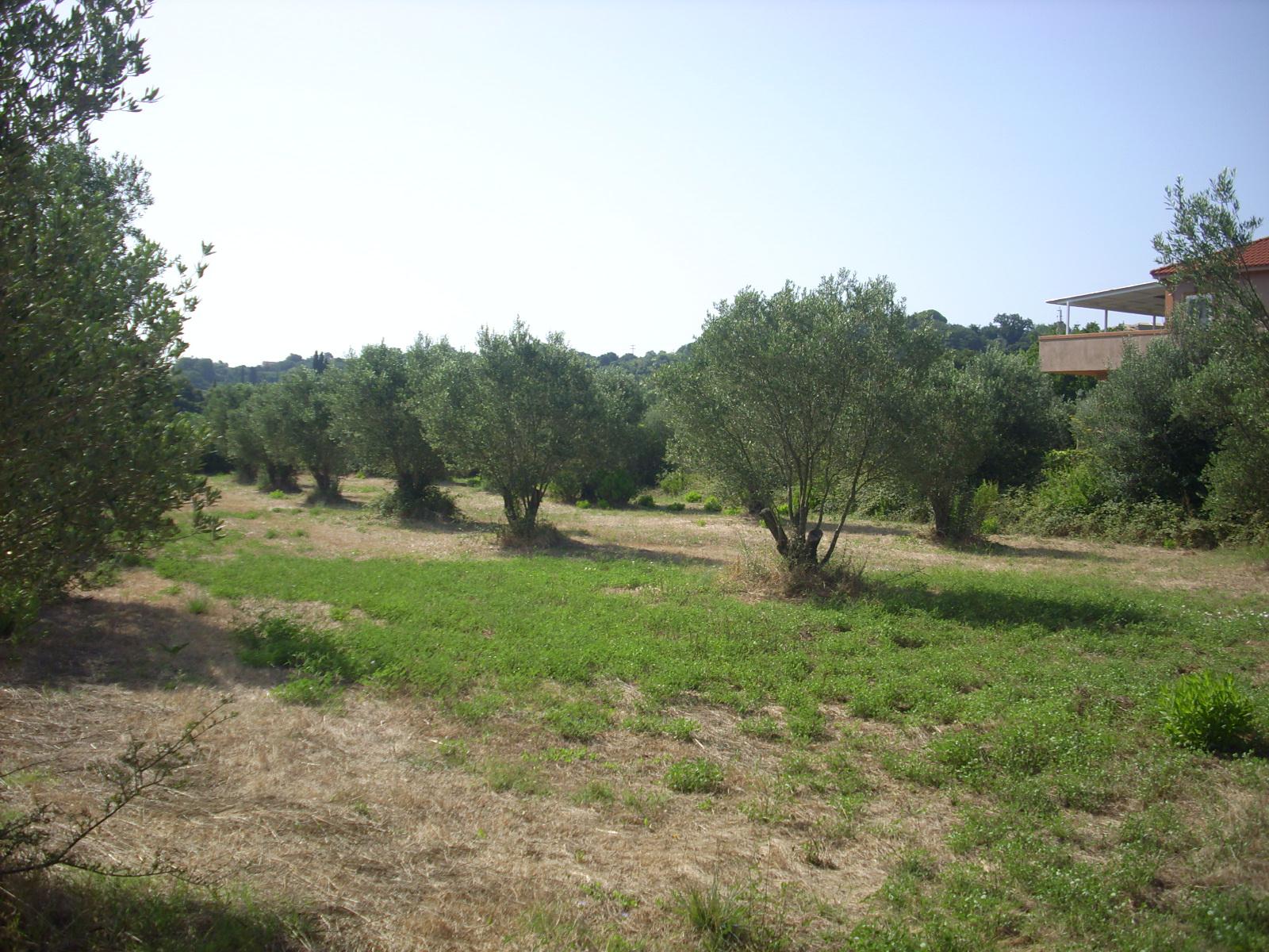 Land For Sale In Keramies Village