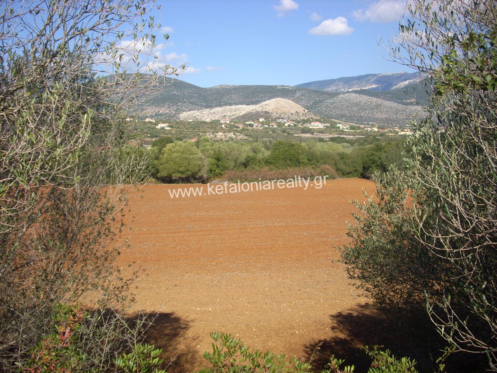 Land For Sale In Pessada